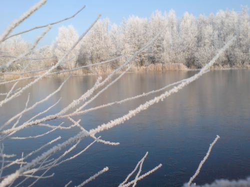 Teich Kammermann im Winter 2