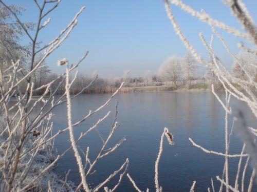 Teich Kammermann im Winter 3
